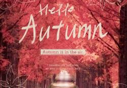 기분좋은 가을이 드디어 왔습니다.